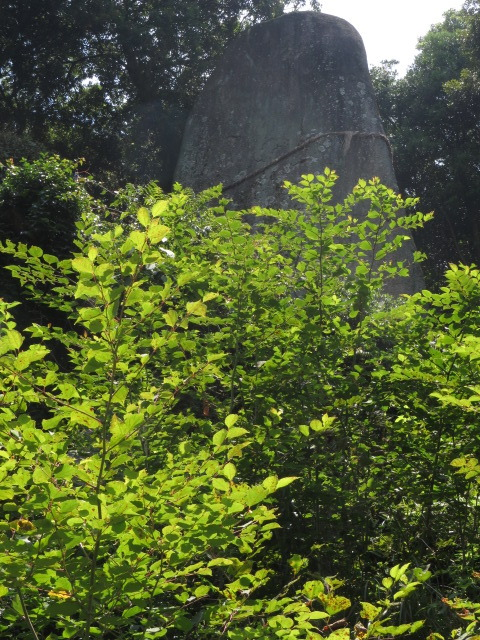 兵庫県淡路市(淡路島)/淡路島を代表する巨石信仰の神社「岩上神社(ひもろぎのお岩さま)」と「岩上寺」