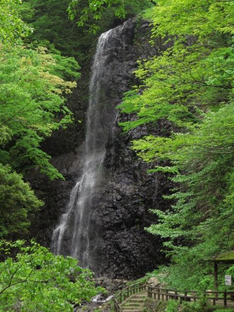 愛媛県東温市/漱石、子規も詣でた景勝美~全長96m「白猪の滝(しらいの-)」