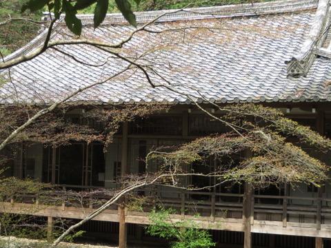京都の桜 2014 ~伏見区「醍醐寺」その③~片道1時間の難所「上醍醐寺」