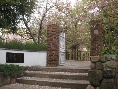 桜の聖地・櫻守笹部氏邸宅跡 前編 ~ 『岡本南公園のササベザクラ』