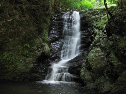 徳島県名西郡神山町/最高の森林浴を~日本の滝100選「雨乞の滝」