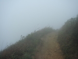 霧に巻かれた山道