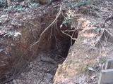 地洞(Cave)