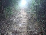 未舗装の山道2