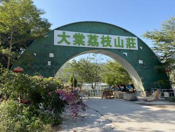 大棠茘枝山荘