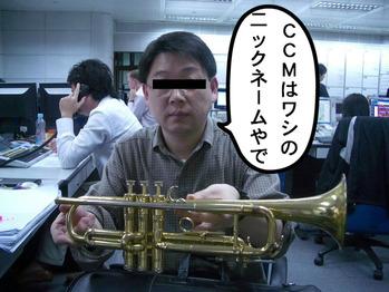CCMsan