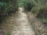 長い下り石段