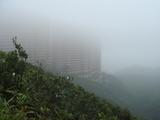 霧に巻かれる陽明山荘