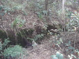 戦壕(Trench)