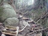 太鼓岩への坂道