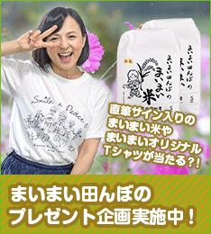 side_maimai_shukaku_pre