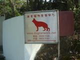 西貢寵物康楽中心