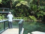 レインボーの泉