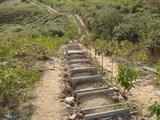 木の階段!
