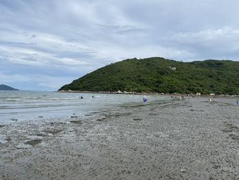 水口灣沙泥灘