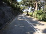 舗装された金山路