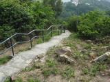 手指山からの坂道