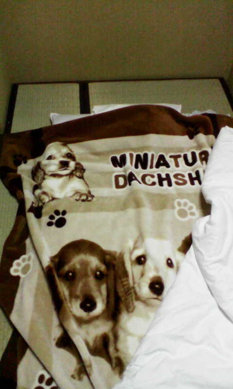 IMG_osaka_hotel_parkinn_dog_blanket