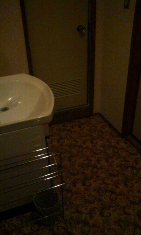 yamanashi_isawa_onsen_viewhotel_outbath