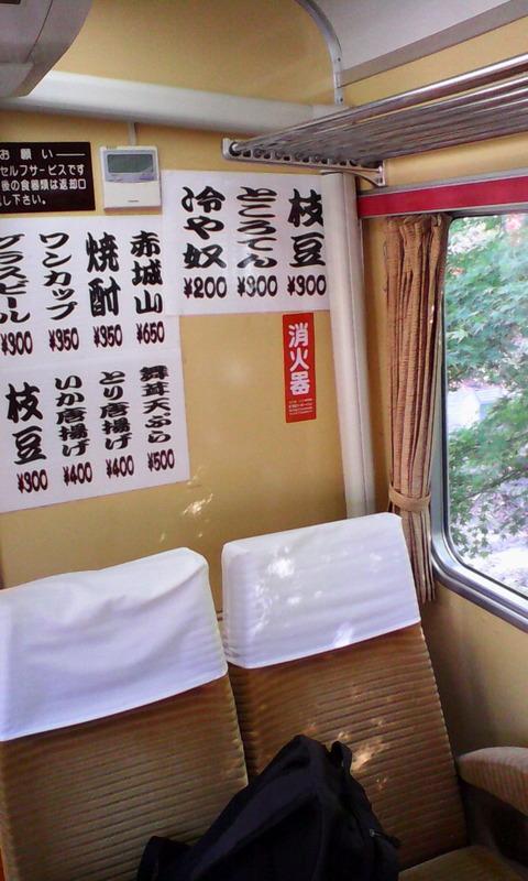 watarase_train_restaurant_seiryu_menu