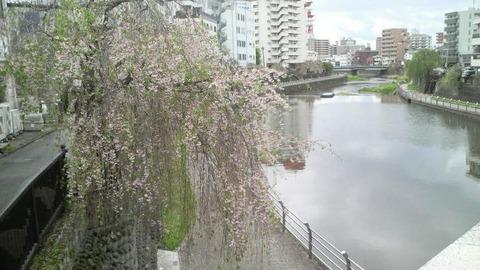 utsunomiya_tagawa_river