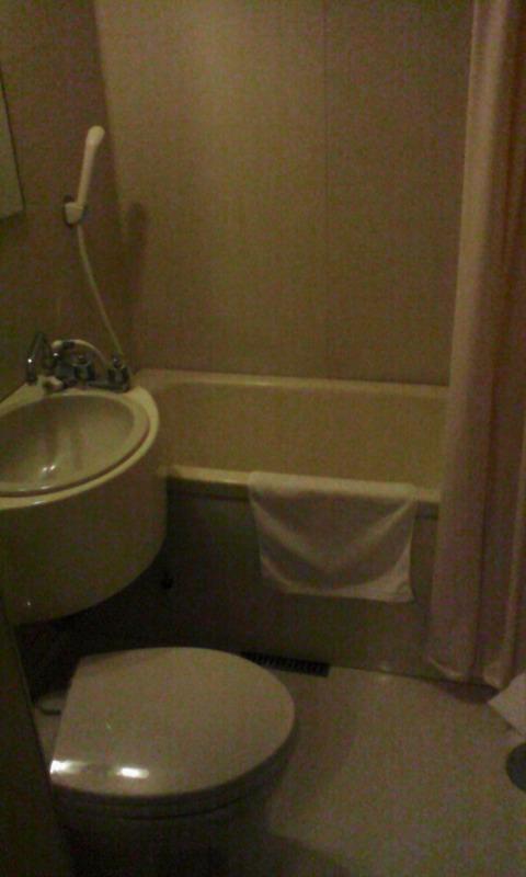yamanashi_isawa_onsen_viewhotel_unitbath