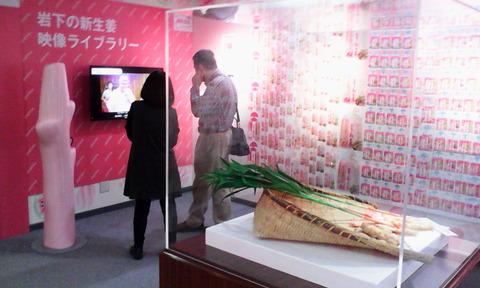 x_iwashita_new_ginger_museum_history