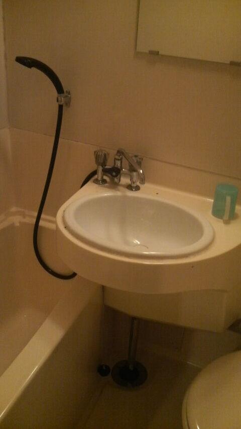 yamanashi_koufu_hotel_azuma_bathroom