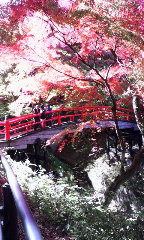 IMG_ikaho_kajika_bridge