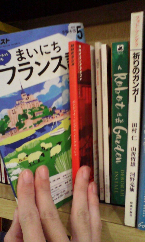 IMG_osaka_hotel_raizan_books_language