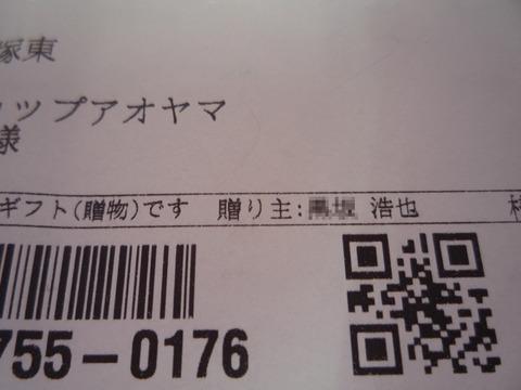 P1060135 のコピー
