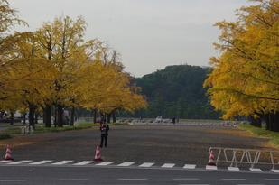 秋2012-3