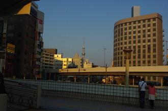 初夏20120504