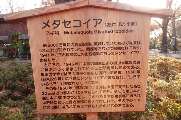 R-PC076619