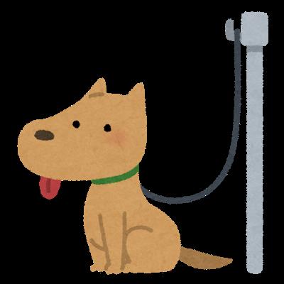 pet_dog_lead_hook