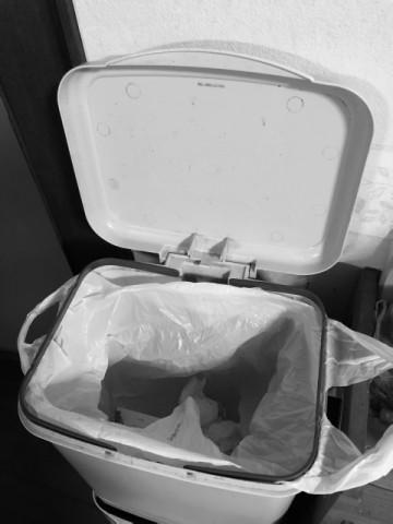 ゴミ箱 台所 便器