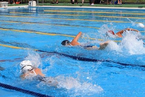 スイミングスクール 水泳