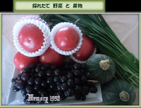 野菜と果物採れたて