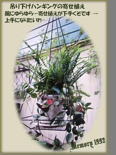 吊り下げハンギングの寄せ植え
