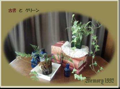 古書とグリーン