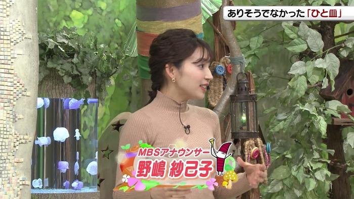 野嶋紗己子アナの乳
