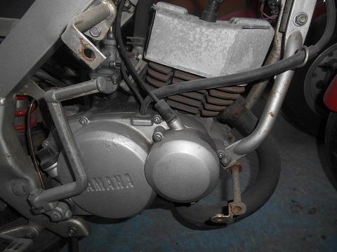 DSCN4146