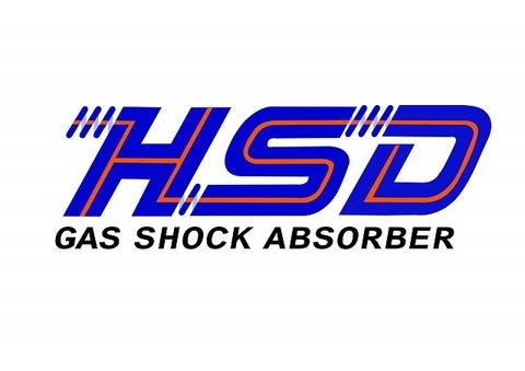 HSD-- copy