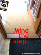 mind the step.