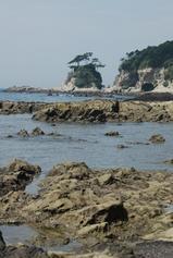 荒崎海岸2