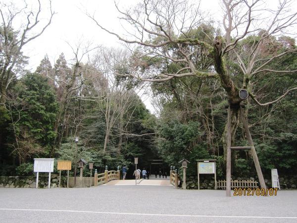 琵琶湖 014