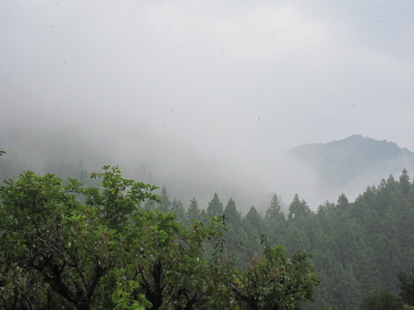 雲が降りて