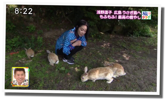 浅野温子 広島 うさぎの島