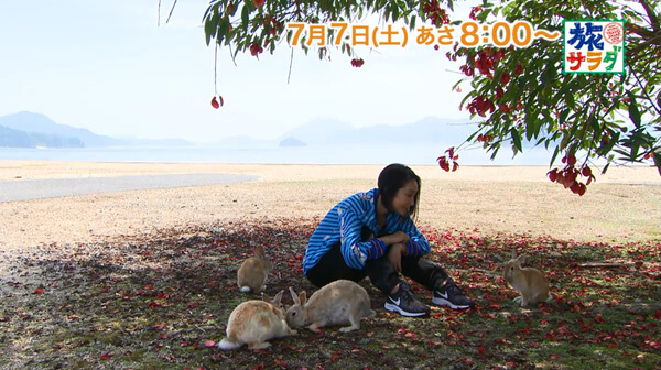 浅野温子 ゲスト出演「朝だ!生です旅サラダ」