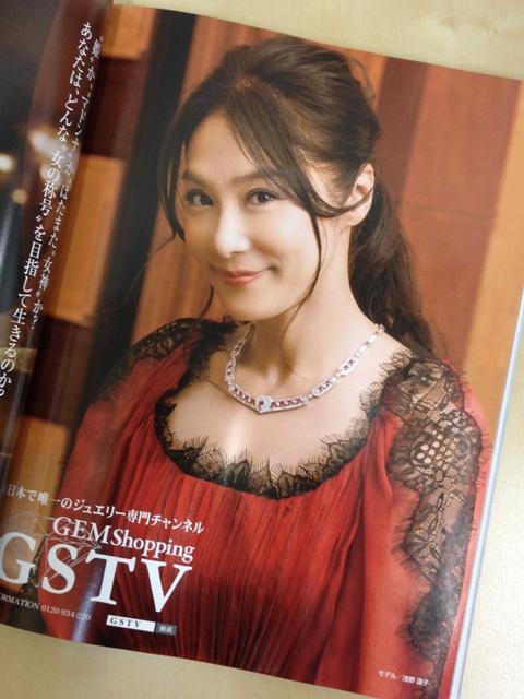 GSTV201311